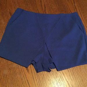 Mittoshop Royal Blue Front Flap Shorts